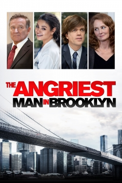 The Angriest Man in Brooklyn-fmovies