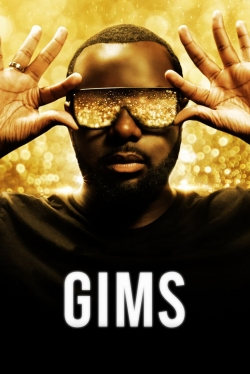 GIMS: On the Record-fmovies